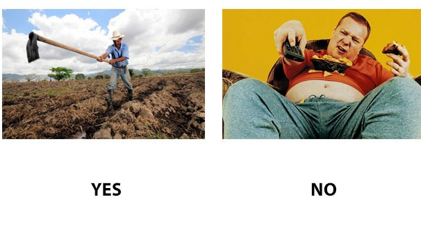 Da sau nu