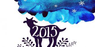 Ghinion in amor 2015