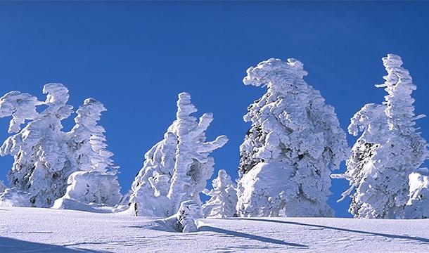Consumul de zapada este o cale buna de rehidratare