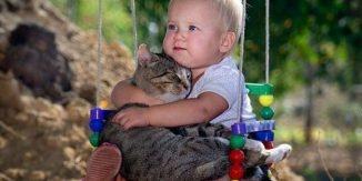 Pisica te iubeste