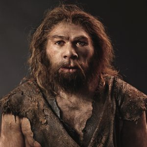 cei mai temuti predatori din lume homo sapiens