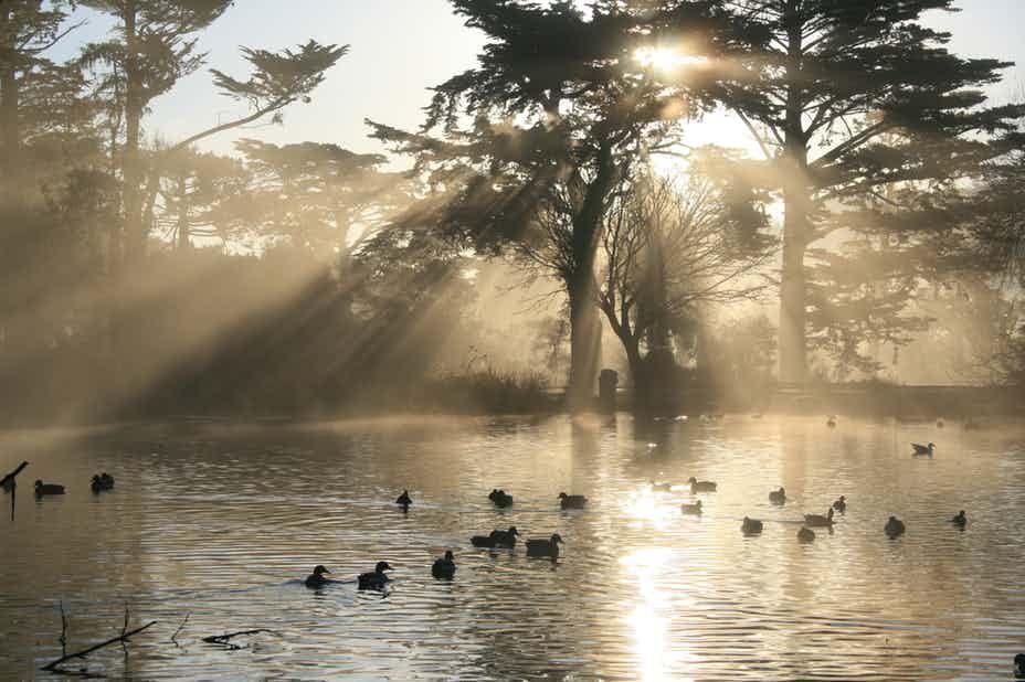 legende infricosatoare fantoma din stow lake