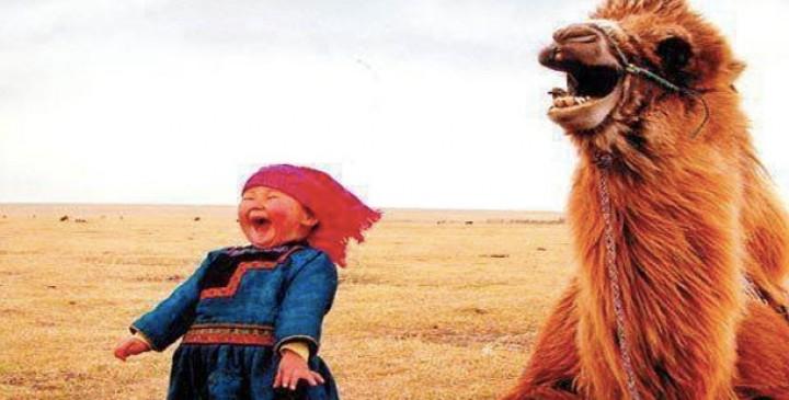 25 de lucruri prin care lumea este ridicol de hilară