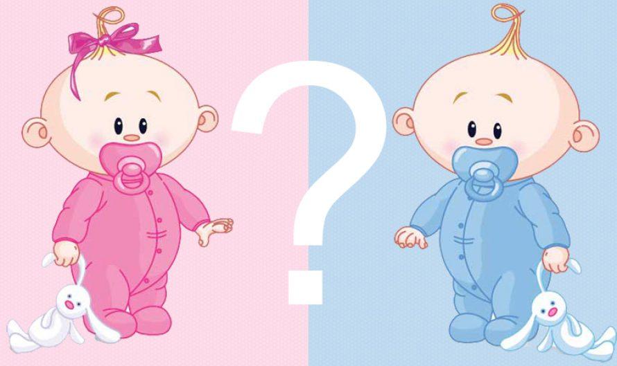 Baietel sau fetita? Afla sexul urmatorului copil!