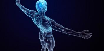 Care este intervalul de vârstă când organismul uman creşte cel mai mult?