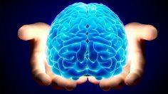 Creierul functioneaza in 11 dimensiuni, spun oamenii de stiinta