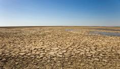 Cum vor distruge schimbările climatice progresele în domeniul sanitar