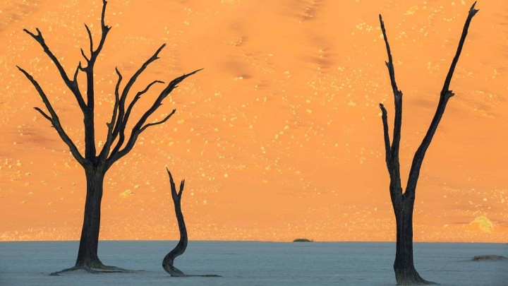 Desertul Namib, iadul fierbinte si uscat