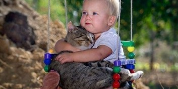 Cum iti dai seama daca pisica ta te iubeste