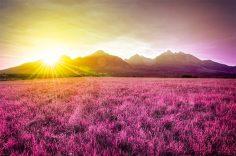 12 lucruri incredibile despre Pamant