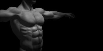 Care este cel mai puternic muşchi din corpul omenesc?
