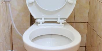 25 de lucruri neașteptate mai murdare decât toaleta